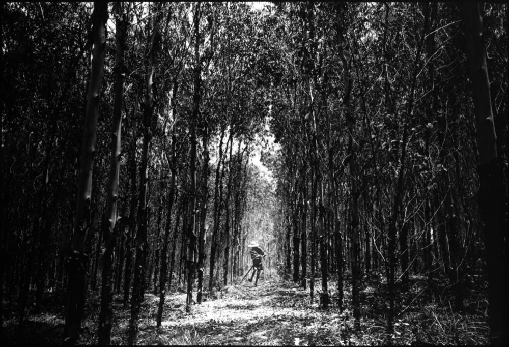 Kosuke Okahara - Vanishing existence   LensCulture