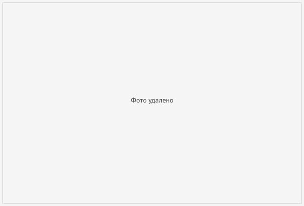 Главные Новости