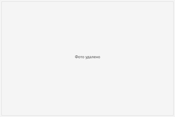 Lenta.ru   Bestseller  cover image