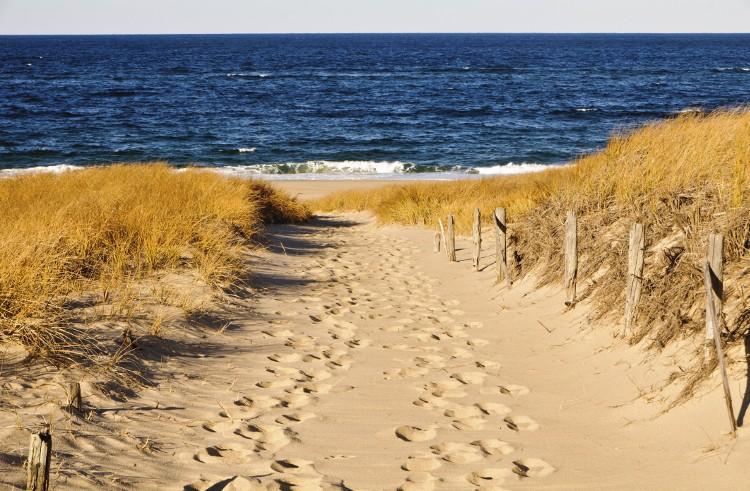 Summer's cheat sheet: choosing a beach in Cape Cod