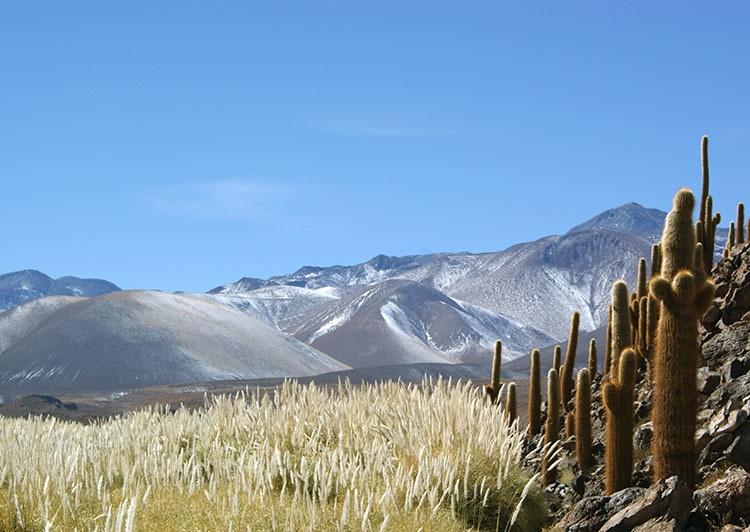 Atacama Desert Chile - Magazine cover