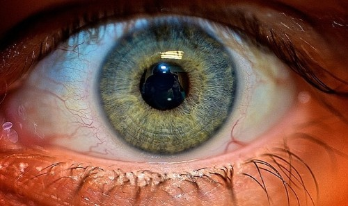 Iris Scanning: The Newest Addition to Apple's Biometric Roadmap?
