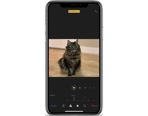 Hands-On With the New Depth Control Feature in iPhone XS and XS Max