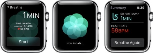 Jay Blahnik Discusses Apple's Delve Into Mindfulness With 'Breathe'