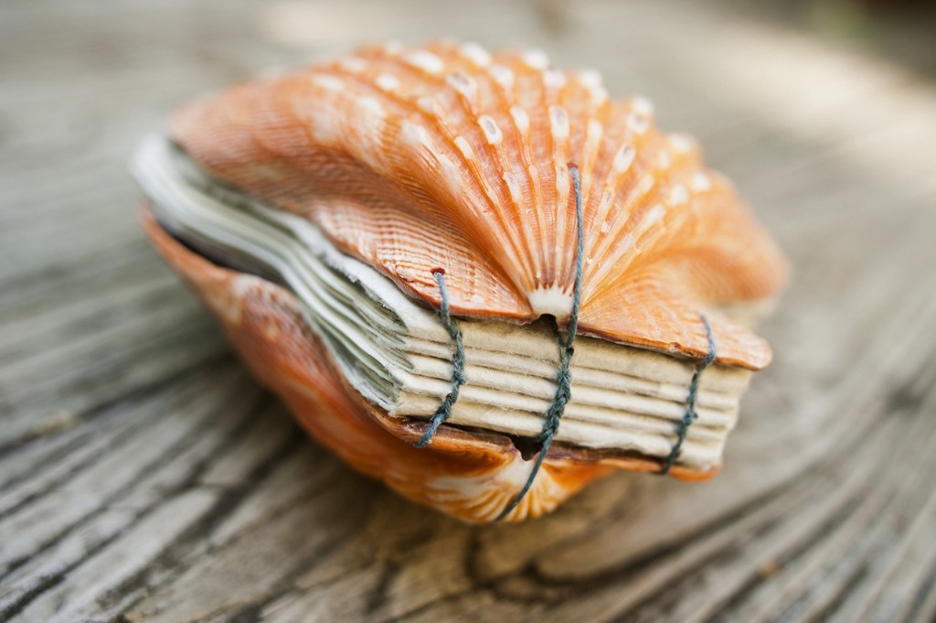Artist's Book Made From Seashells | Make: