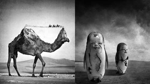 Artist manipulates photos into surreal and dreamlike scenes