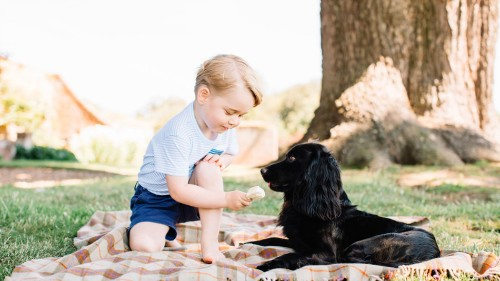 These adorable photos prove that 3-year-old Prince George is still as cute as ever