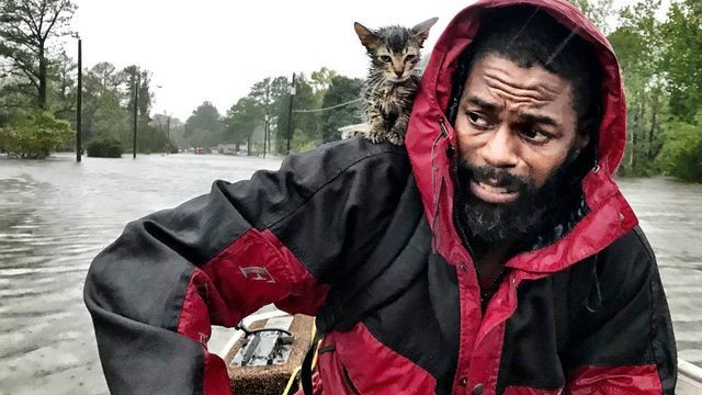 The heart-wrenching tale of one man rescued from Florence and his cat named 'Survivor'