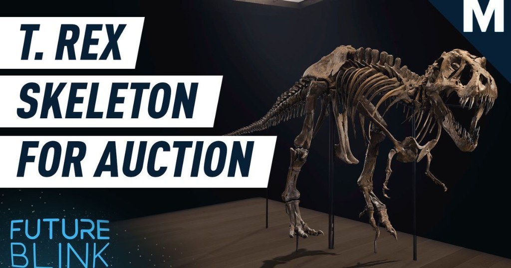 Now is your chance to own your very own T. rex skeleton