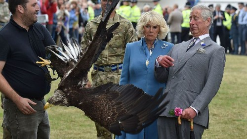 Prince Charles reacts to a flapping eagle, sparks brilliant meme
