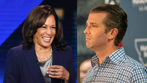 Donald Trump Jr. tried to insult Kamala Harris. It backfired spectacularly.