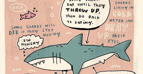 Weird facts drawn in cute style to tickle your brain