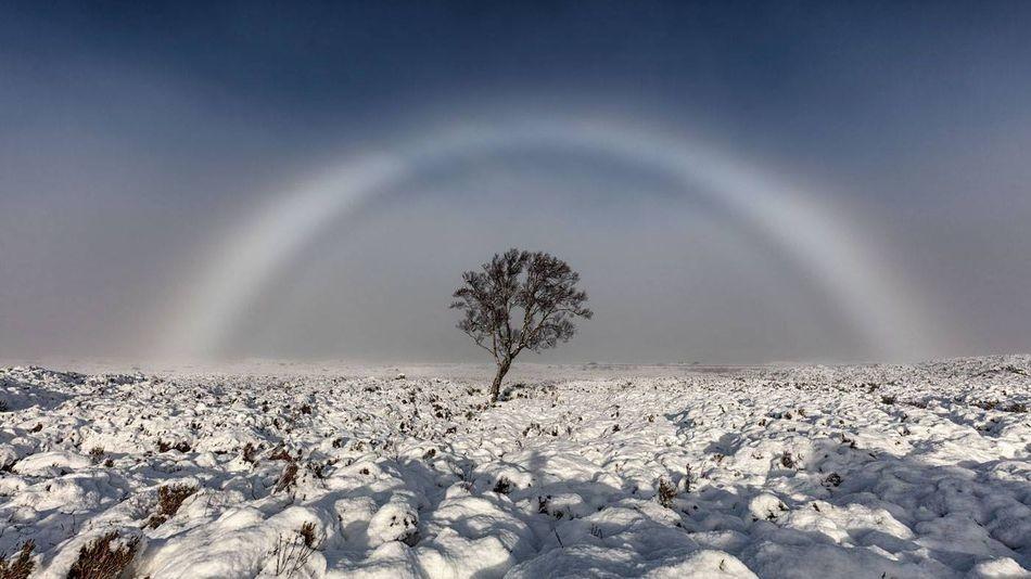 White rainbows are the natural phenomenon you've never heard of