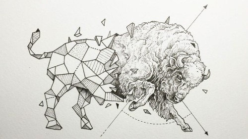Animals meet geometry in striking illustration series