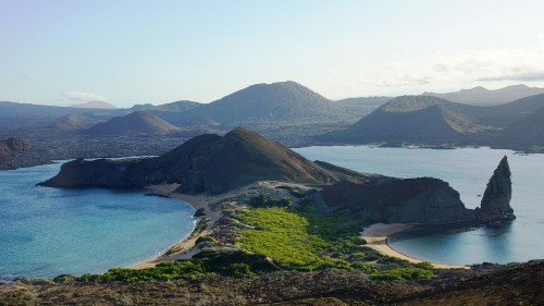Bummer: Scientists find Galápagos Islands swarm with marine invaders