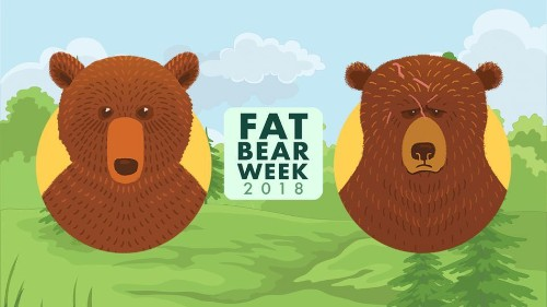 Day 2 of Fat Bear Week pits a scarred, powerful male against a young challenger