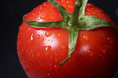 Eating tomatoes increases the chances of you becoming a father - Science