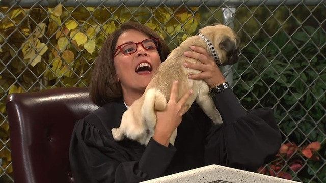 Somebody needs to actually make this fake 'SNL' show, 'Dog Court'