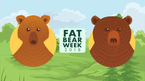 Day 4 of Fat Bear Week voting pits a bully against a chunky favorite at the Brooks River