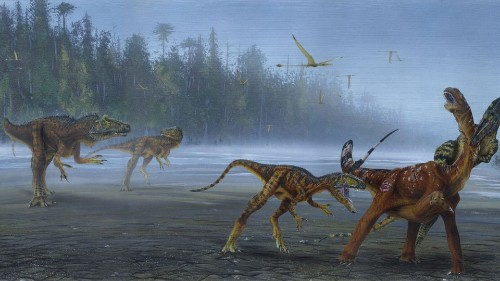 Palaeontologists Discover New Allosaurus Species In North America - Science