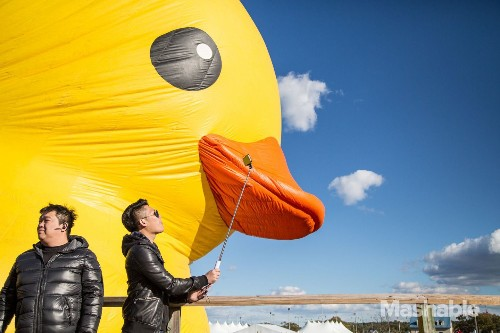 The 11-ton rubber duck floats to New York