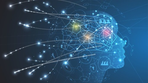 Pune Company Launches A Brain Quantifying Analytics Tool Called NEUROShield - Science