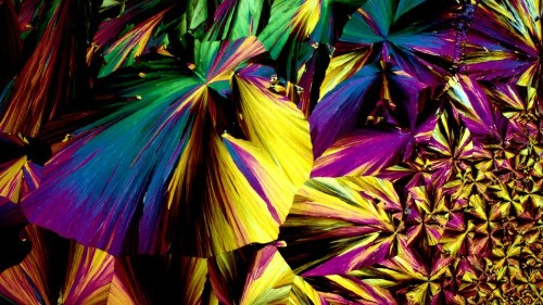 This Is What Booze Looks Like Under a Microscope