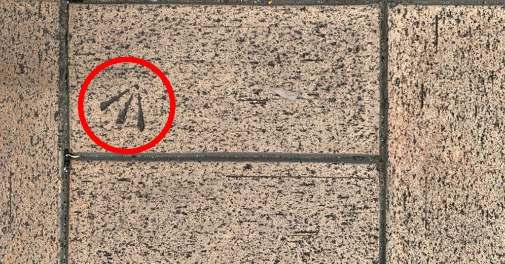 Have you seen these bird feet markings on bricks? Here's what they really are.