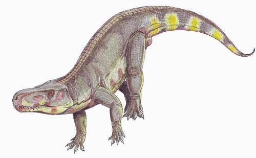 This Crocodile-Like Giant Preyed on Vegetarian Dinosaurs Almost 210 Million Years Ago!