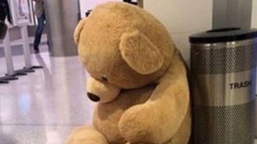 TSA's tragic tale of a giant abandoned teddy bear gets a twist