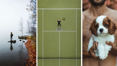 Find out what these three photos have in common