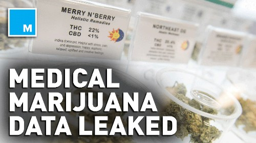 Medical Marijuana Dispensary Breach Leaves Thousands Of users Exposed - Tech