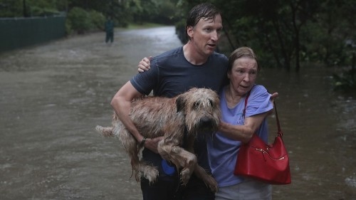 Tropical Storm Harvey in photos: Views of the Houston flood from the ground