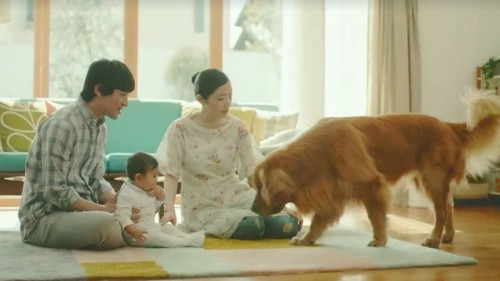 Amazon's new commercial features a dog willing to do anything to make this baby happy