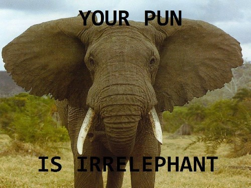 15 Animal Puns Ewe Can't Live Without