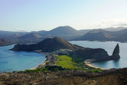 Bummer: Scientists find Galápagos Islands swarm with marine invaders - Science