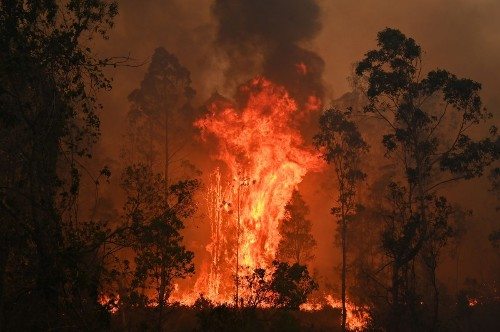 The 'arson emergency' trending amid Australia's bushfire crisis is actually not a thing - Science