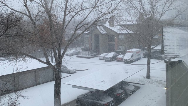 It's snowing in Texas and Twitter is freaking out