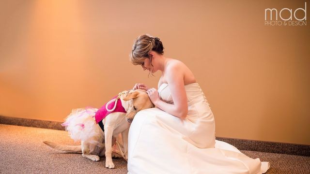 Service dog in a tutu aiding bride at her wedding totally steals the show