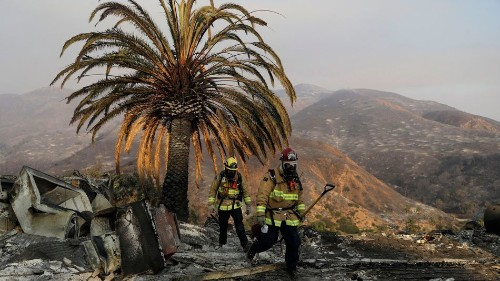 Firefighters slam Trump's illogical tweet about out-of-control California fires