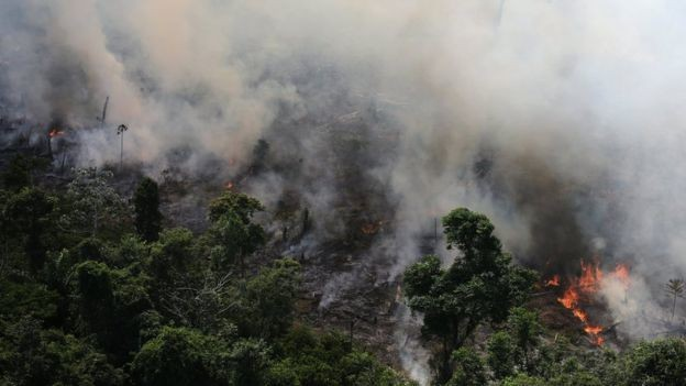 The Amazon has been burning for the 3 weeks and people are angry at the lack of media coverage