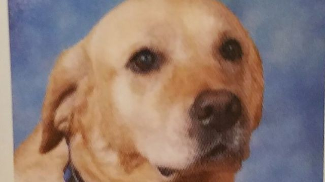 Goodest girl ever gets her own entry in school's yearbook