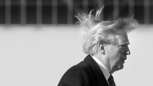 Behold! the gruesome reality of Trump's hair is finally known.