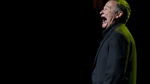 Thank You, Robin Williams, the Comedy Giant Who Made Us Think