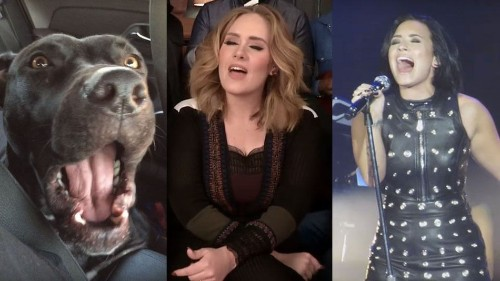 10 epic Adele covers from 2015 that the world won't forget in a hurry