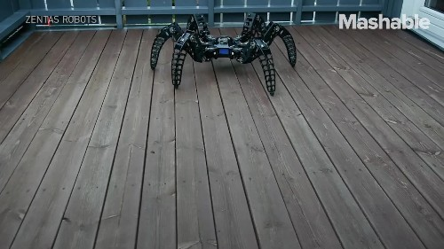This robotic spider looks freakishly real