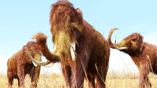 Scientists revive DNA from ancient woolly mammoth