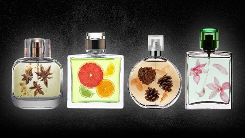The Best Cologne from Each Fragrance Family