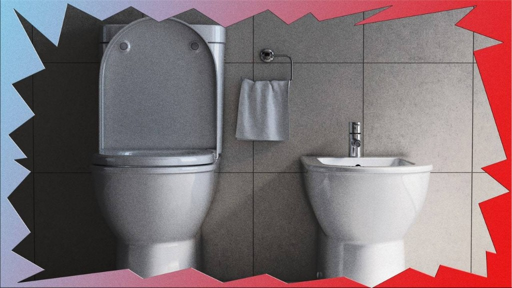 Now Is the Time to Consider Investing in a Bidet