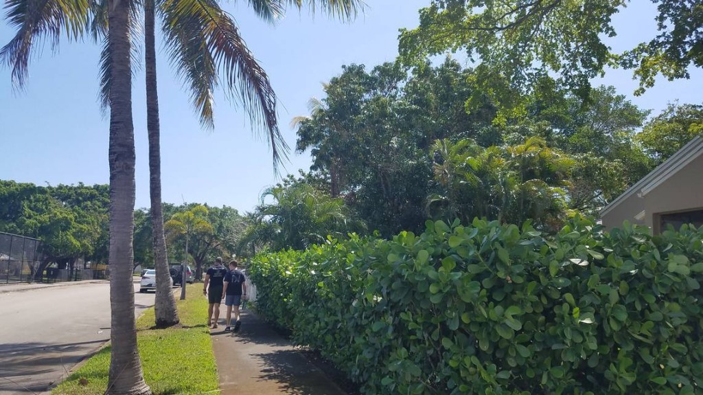 Cross the street, bro: How to take a quarantine walk in Miami without being a jerk